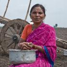 Dryland farmer